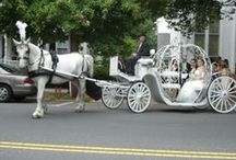 New Jersey Based Wedding and Event Professionals / If you are a New Jersey Based Wedding and/or Event professional please request to join this group hosted by Dream Horse Carriage Company www.dreamhorsecarriage.com. #NJPinParty