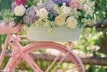 Luvly Spring