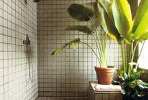 Bathrooms / by Naomi Cheung