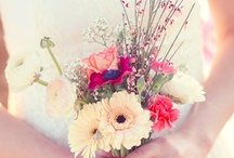 Weddings :D / by Angelica Garcia