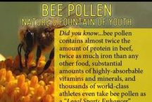 HEALTH: BEE POLLEN~SUPER FOODS / pure pollens nutritional content: 1. Antioxidants – protect cells from oxidative damage. Modern research suggests oxidative damage may cause aging. 2.Proteins – build new tissue and repair damaged cells. Create hormones and enzymes. 3.Minerals – body maintenance and regulatory functions. 4. Carbohydrates – provide essential energy for brain and nervous system. 5. Enzymes – catalyst for proper digestion. 6. Vitamins – regulate and energize metabolism through enzyme systems.   / by Terlyn Strong Dufrene