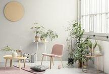 Home // Living / by Miranda Schenkel