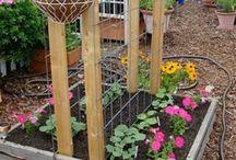 Garden & Outdoor Living Space / by Gail Schwanitz