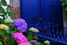 door / by Gretel