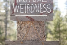 Wedding Ideas / by Jamie Whitbeck