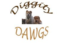 My DigTDawgs / My Furry Family / by Kelz Wright