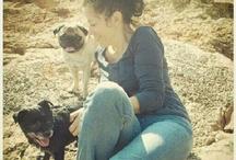 Los perros y yo