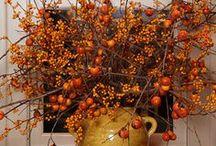 Fall ~ Thanksgiving!! / by Deborah McDonough
