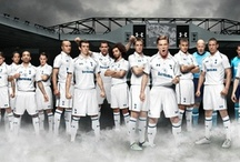 Tottenham Hotspur, my team / by mark b