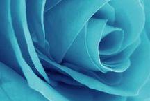 ★ Azure ★ / Azure * Aqua * Cyan * Turquoise Blue * Sky Blue / by Lisa ★ Berry