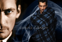 Gandy Candy