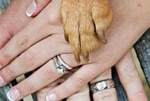 Wedding - Including Pets