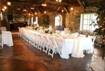 Wedding - Vineyard / Wine Lover