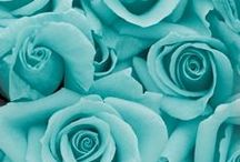 Turquoise & Mint ♥ / I Love this colours ♥
