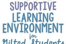 Gifted Learners   Social Emotional