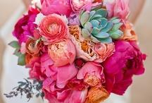 WEDDING - Bouquet  / by Sarah
