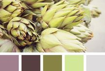 Home Decor: Colors / by Laura Stuckey