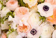 Flowers / by Laura Stuckey