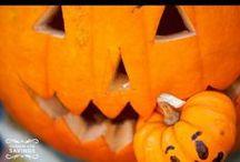 Fall/Halloween / by ShaRay&Jack