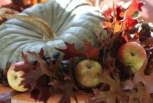Seasons / by RoseAnn