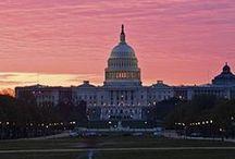 Trip to Washington DC / by RoseAnn