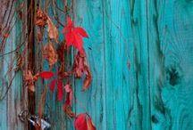 Colour   An Autumn Palette / Psicologia del color: personalidad otoñal. Atributos: Orgánicos, prácticos, calidos y apasionados. Con una fuerte conexión con la naturaleza, amor por el pasado y  sed de entender cómo y por qué funcionan las cosas. Lo menos materialista de todas las estaciones. La educación es importante para ellos y tienen un gran amor por los libros y las artes. Calidos, Intenso, colores apagados y saturados apoyan la personalidad del otoño.