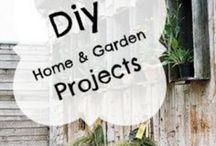 Home & Garden / Cool things for the home and garden | Diy garden projects | homemade garden ideas | garden tips | diy garden ideas | diy home decor | diy home and garden projects