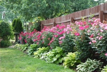 Outdoors:  gardens and landscapes / beautiful landscaping and gardening tips