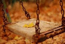 Seasons- Fall is my favorite!