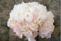 [ wedding ] - flowers / by Lori Y