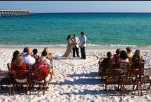 Commitment Ceremonies / Commitment Ceremonies / by Cheeca Lodge and Spa