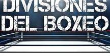 DIVISIONES DEL BOXEO / Conoce los límites de peso de cada una de las divisiones del boxeo.
