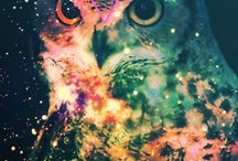 """Owl Always Love You  / """"A wise old owl sat on an oak; The more he saw the less he spoke; The less he spoke the more he heard; Why aren't we like that wise old bird?"""" / by Kayla Mae"""