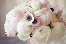 Wedding Floral / by Rachelle Manning