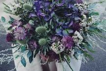 Wedding Trends / Rings, dresses, food, décor, venue... anything to inspire your great day
