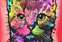 Cats / Pretty Kitties / by Jackie Kelly