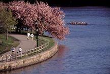 Discover Spring in PHL
