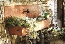 peaceful gardens / by Cindy Santonas
