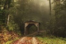 rural, back country roads / put some gravel in your travel, take the long way home / by Cindy Santonas
