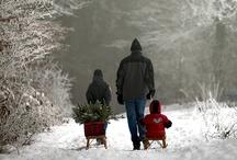 Winter Wonderlands / by Mary Derrick 1
