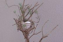 Eggs and nests.Original / I built the nest for someone.