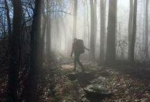 ThE AT / appalachian trail ------- go for a hike! / by Cindy Santonas
