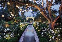 Monet's Garden Wedding / by Lisa Brown