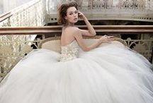 Ballerina Bride / by Lisa Brown