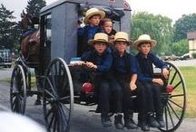 Amish / by Nina Holdman Rader