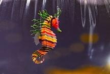 Animals--Aquatic&Plant--Sea Horses, Sea Dragons / by Nina Holdman Rader