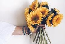 Give me a flower / Pattern with flower, dress with flowers, anything with flowers. We love them too much!