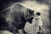 bear / by Yuliya