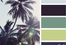 Colour Palette / by Paige Wood