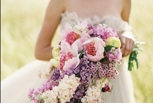 Wedding / by Linnea Roth